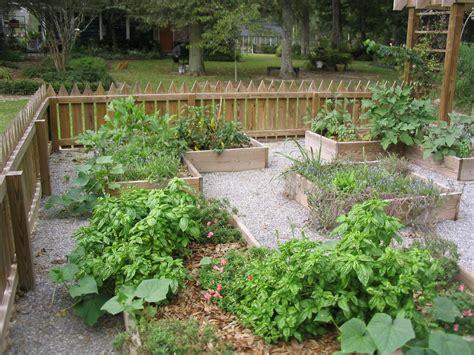 vegetable gardening blogs vegetable gardening bed preparation