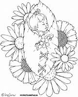 Coloring Fairy Pages Adult Adults Bing Colouring Printable Sheets Books Shower Grown Pregnancy Fairies Sweet Birth Stamps Flowers Zentangle Digital sketch template