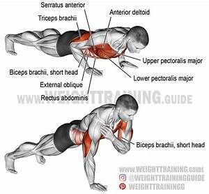 Shoulder tap push-up exercise guide and video | Weight ...
