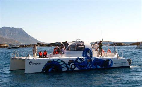 Catamaran Dive Boats by Next Catamaran Dive Boat For Sale Sailing