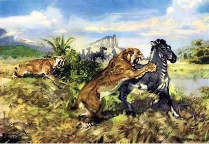 Burian Zdenek Paintings Prehistoric Tigers Sabertooth Tiger
