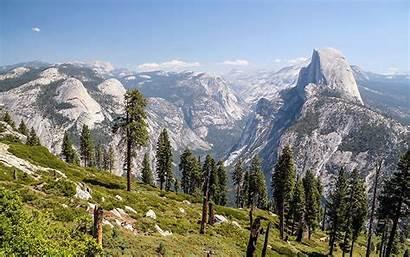Nevada Sierra Trees Moving Zoom Temperatures Warmer
