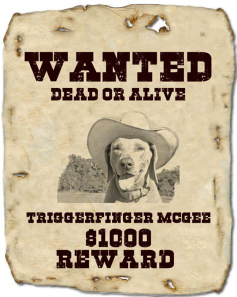 wanted poster templates excel  formats