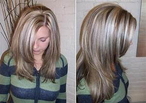 Grey Hair Highlights and Lowlights | Platinum Highlights ...