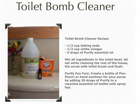 Carpet Cleaners Carpet Cleansing Essentials Toilet Bowl Cleaner On Carpet Meze