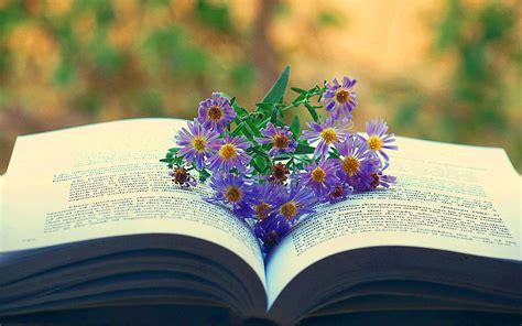 reading books wallpaper gallery