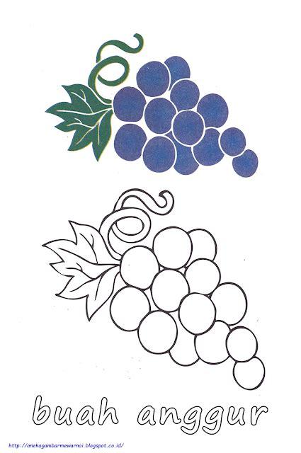 gambar mewarnai buah dan sayur
