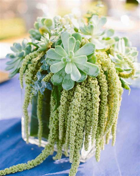 36 Ideas For Using Succulents At Your Wedding Wedding