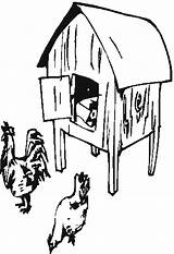 Chicken Coloring Chook Coop Drawings Template Sketch Farm Templates sketch template