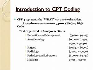 Medical Coding Training Online Minicourse