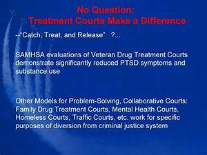 PTSD, Substance Abuse, Mental Health, Treatment Courts. Dr ...