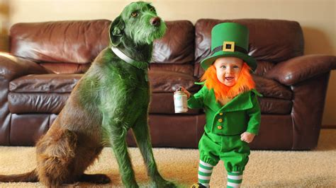 St Patricks Day For Kids See Dads Cute Leprechaun