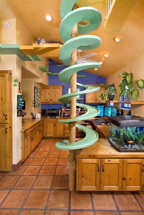crazy       dream house