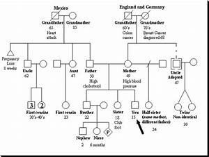 draw your family tree for medical history family With medical family tree template
