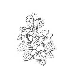 African Violet Flower Drawing