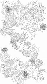 Coloring Adult Printable Artichoke Lovers Paradise Pages Thekitchn Sheet Collage Books Printables Kanelos Weiner Jessie Credit Edible Storage Artichokes Sell sketch template