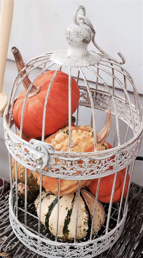 25 best ideas about vintage bird cages on bird cage decoration antique bird cages