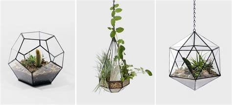 plante verte chambre un terrarium de plantes design pour votre maison