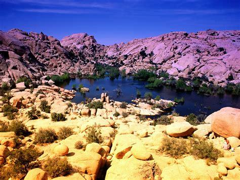 Beautiful Places Around The Globe Joshua Tree National