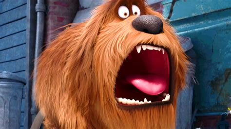 The secret life of pets is a 2016 american 3d computer animated comedy film produced by illumination entertainment and released by universal pictures. Movie Times and Movie Theaters in Phoenix, AZ- Local ...