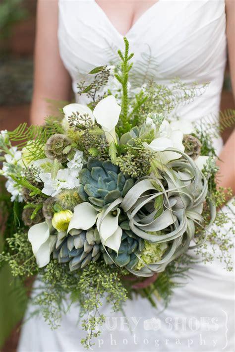 succulent  tillandsia bridal bouquet seed  stem