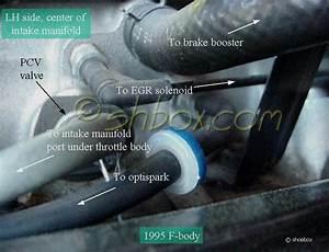 95 Lt1 Intake Manifold Vacuum Ports Question