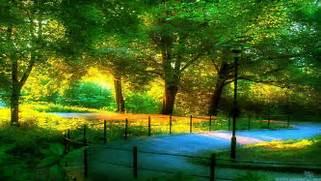 Beautiful Scenic Wallp...Beautiful Nature Scenery Wallpapers