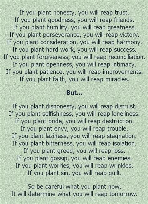 Reap What You Sow Quotes Bible