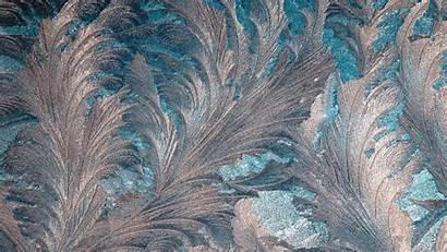 Glass Frosty Patterns Pattern Frost Ice 1080p