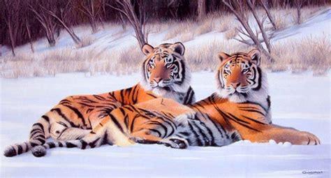 resultado de imagen para paisajes hermosos de animales