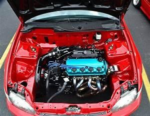 Fuel Tuck U0026 39 D  U2014 Fuel Tuck U0026 39 D D