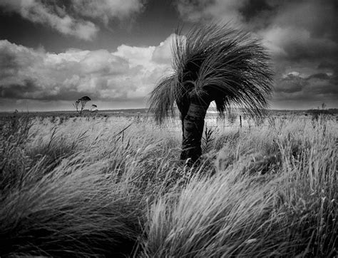 artistic jobs uk places  sell photography prints stock