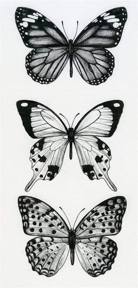 butterfly drawing ideas  pinterest butterfly