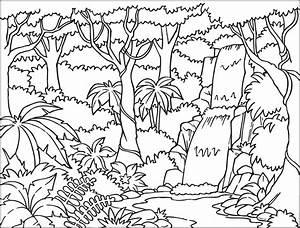 RAINFOREST COLORING PAGES | Coloringpages321.com ...