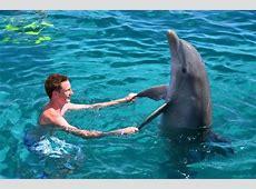 Exotische dieren wereld op Curacao Apartments Curacao