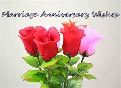 Anniversary Wishes Happy Roses Cards Friends Saying