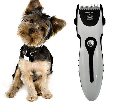 pet hair clippers dogs quick buying guide top dog tips