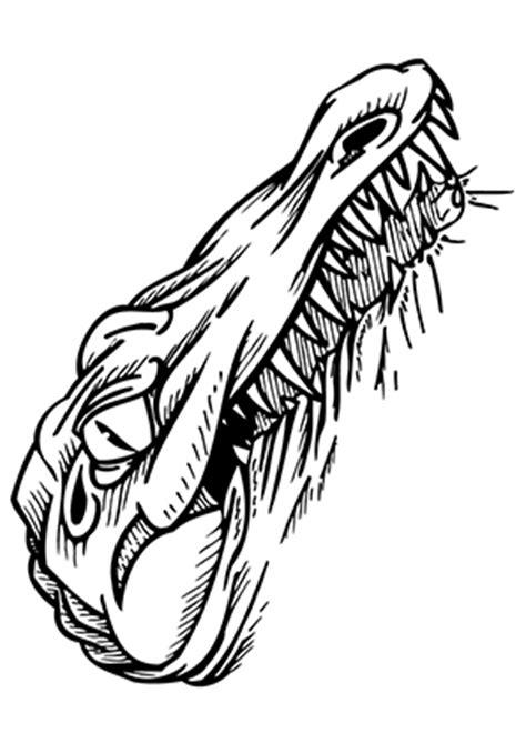 ausmalbilder boeses krokodil krokodile malvorlagen
