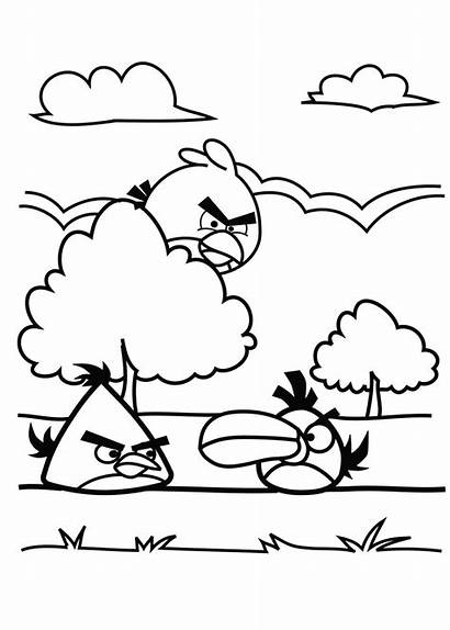 Coloring Birds Angry Pages Bird Funny Children