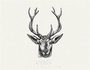 Elk Antlers Graphic | www.pixshark.com - Images Galleries ...