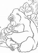 Gorilla Coloring Pages Baby Kong King Cute Tarzan Da Disney Colorare Clipart Boys Popular Colorings Library Getdrawings Animal Salvato Coloringhome sketch template