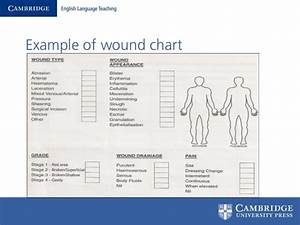 Wound Charting Examples