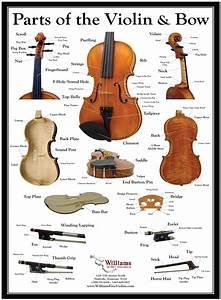 Faq  U2013 Williams Fine Violins
