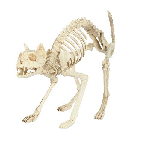 totally ghoul skeleton cat halloween decoration seasonal