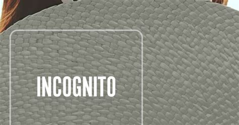 behr incognito paint    bedroom   sophisticated   pairs