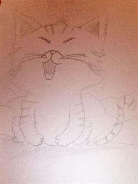 dessin de chat facile 224 faire pour les d 233 butants beau animal