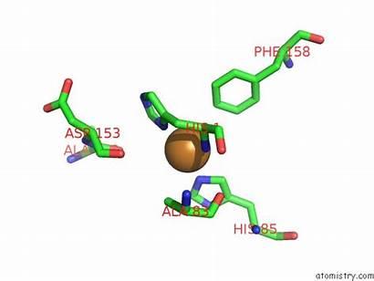 Copper Pdb Bacillus Monooxygenase Thuringiensis Polysaccharide Lytic