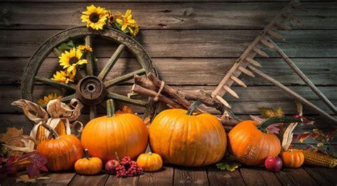 Dekoideen Herbst Garten by Garten Herbstlich Gestalten 6 Schnell Umsetzbare Dekoideen