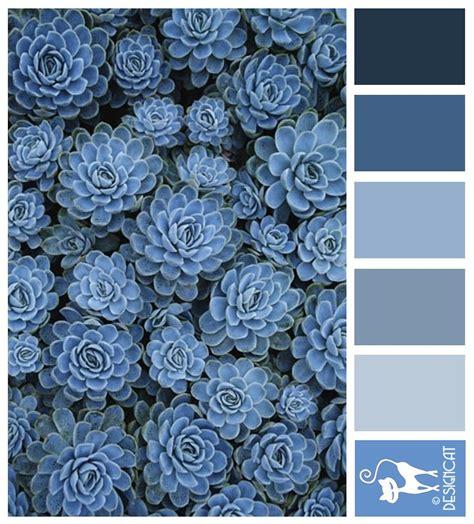 blue sedum navy blue grey slate pastel designcat
