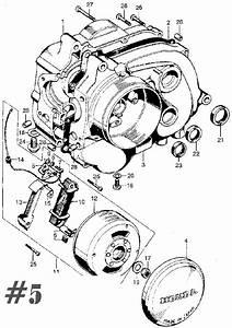 Honda Qa50 Wiring Diagram